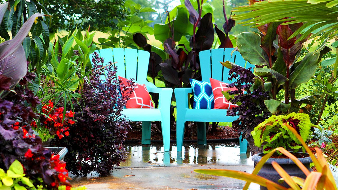 Tropical garden in Arkansas - tour | Tropical garden ...