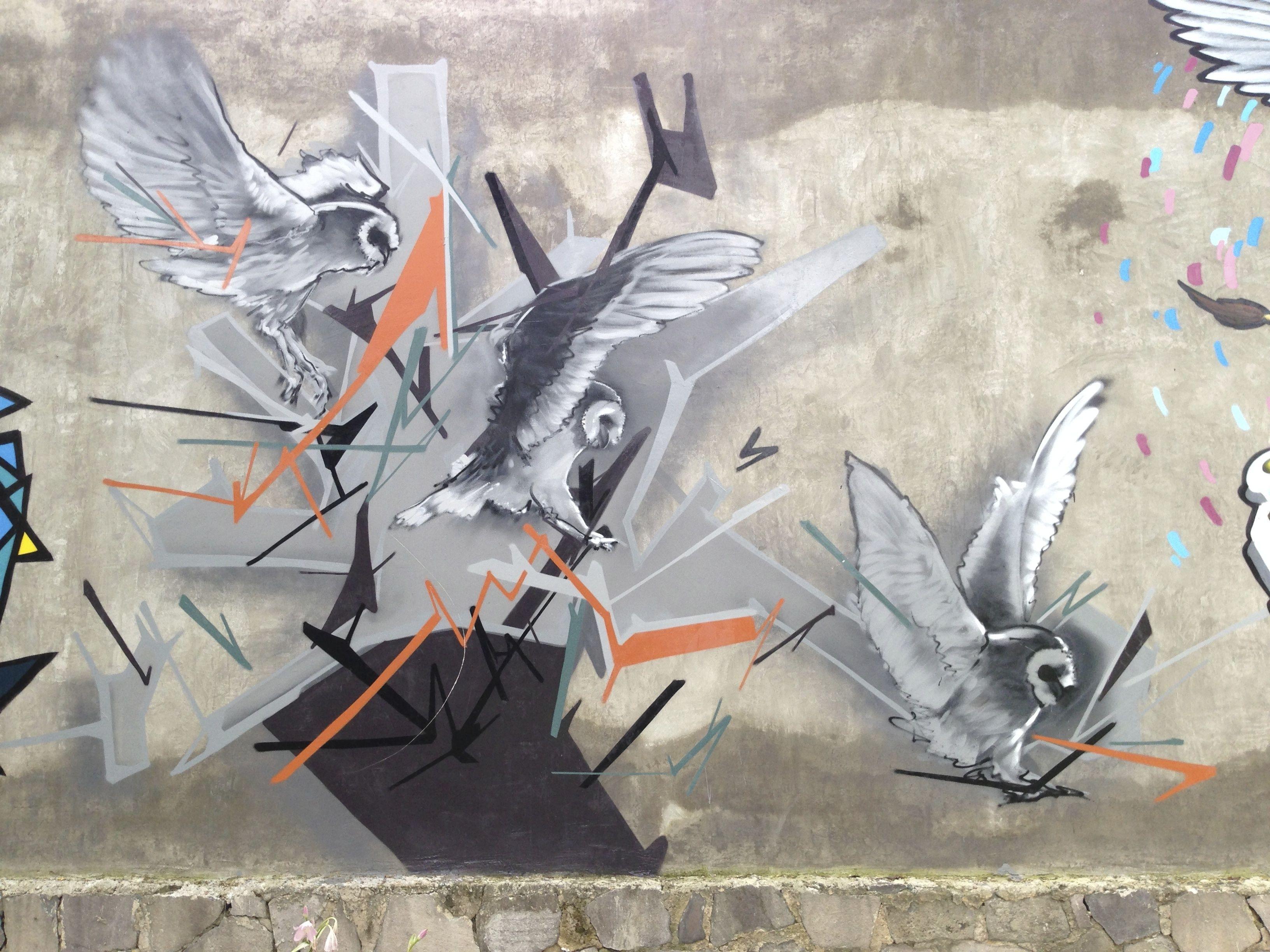 Resultado de imagen para arte en calles de guadalajara