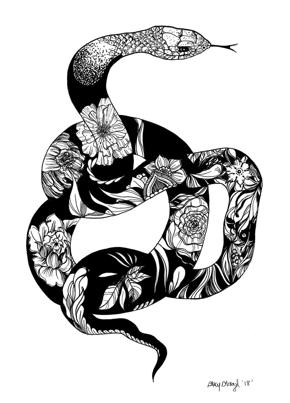 Snake illustration floral illustration black and white