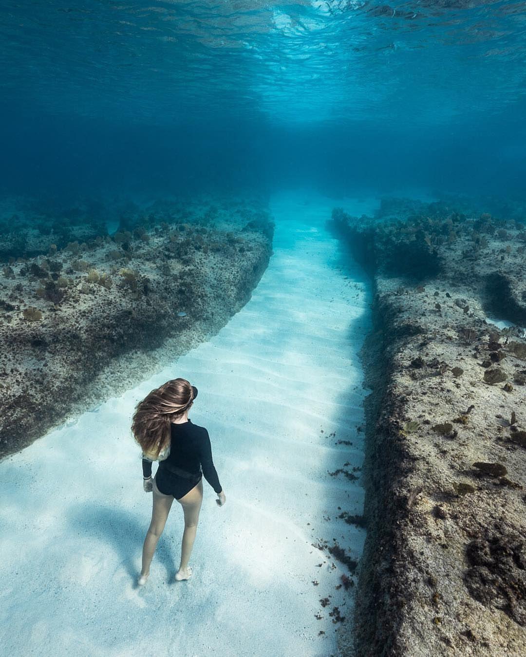 летать, благодаря необычные подводные фотографии фотосъемка