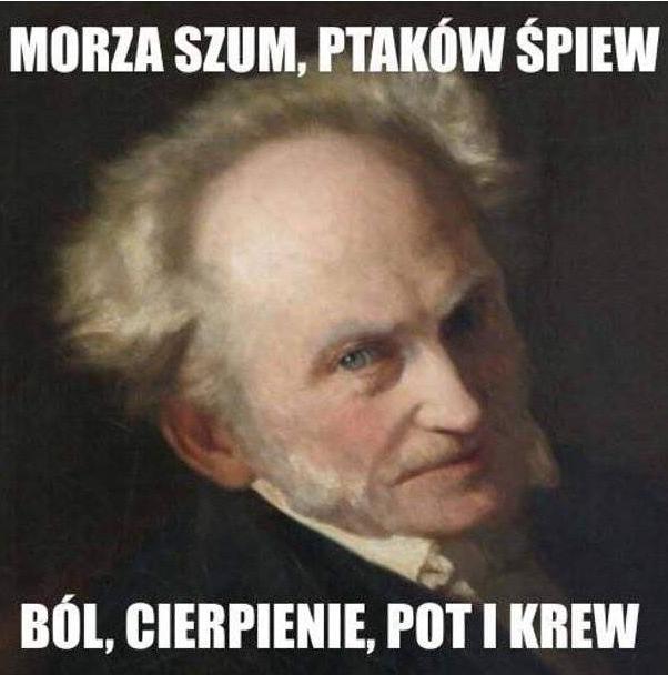 Pin By Kuba Niklasinski On Slowa Szumy Gify Cytaty Funny Memes Funny Funny Quotes