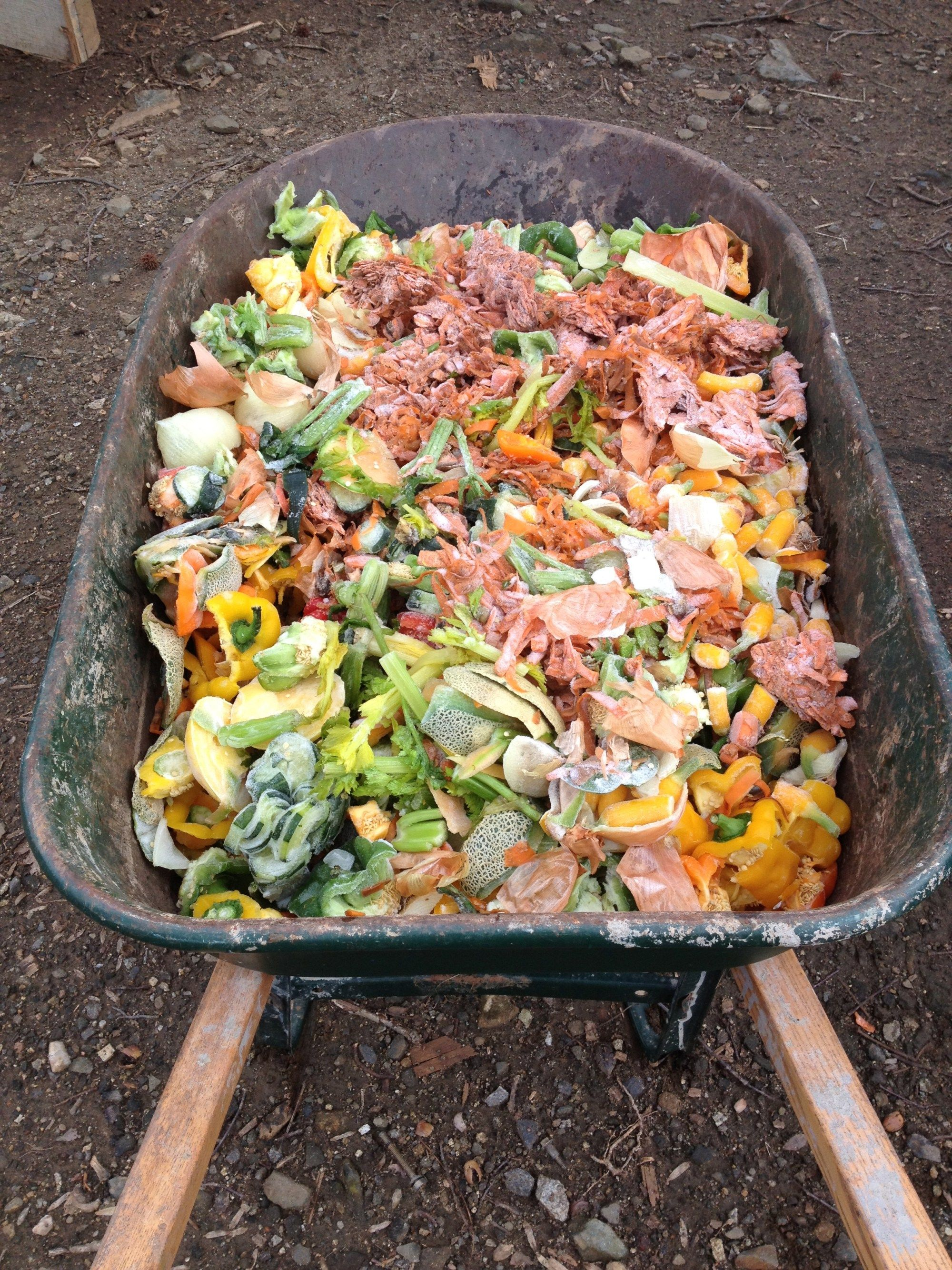 Where To Get More Food Scraps To Feed Your Composting