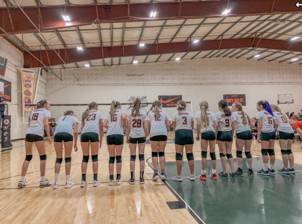 Volleyball Team In 2020 Volleyball Volleyball Team Basketball Court