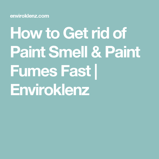 How to Get rid of Paint Smell & Paint Fumes Fast | For the