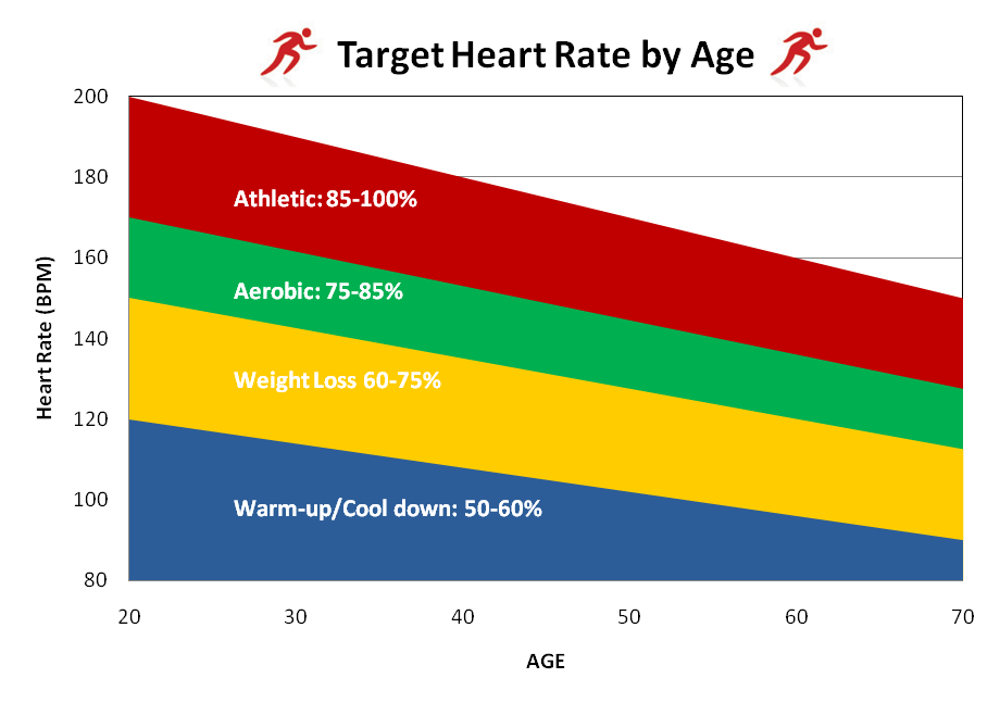 The Best Heart Rate To Burn Fat Is The Cardiovascular Intensity That