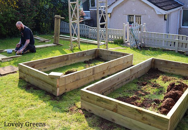 Building Raised Garden Beds Sizes The Best Wood Tips 400 x 300