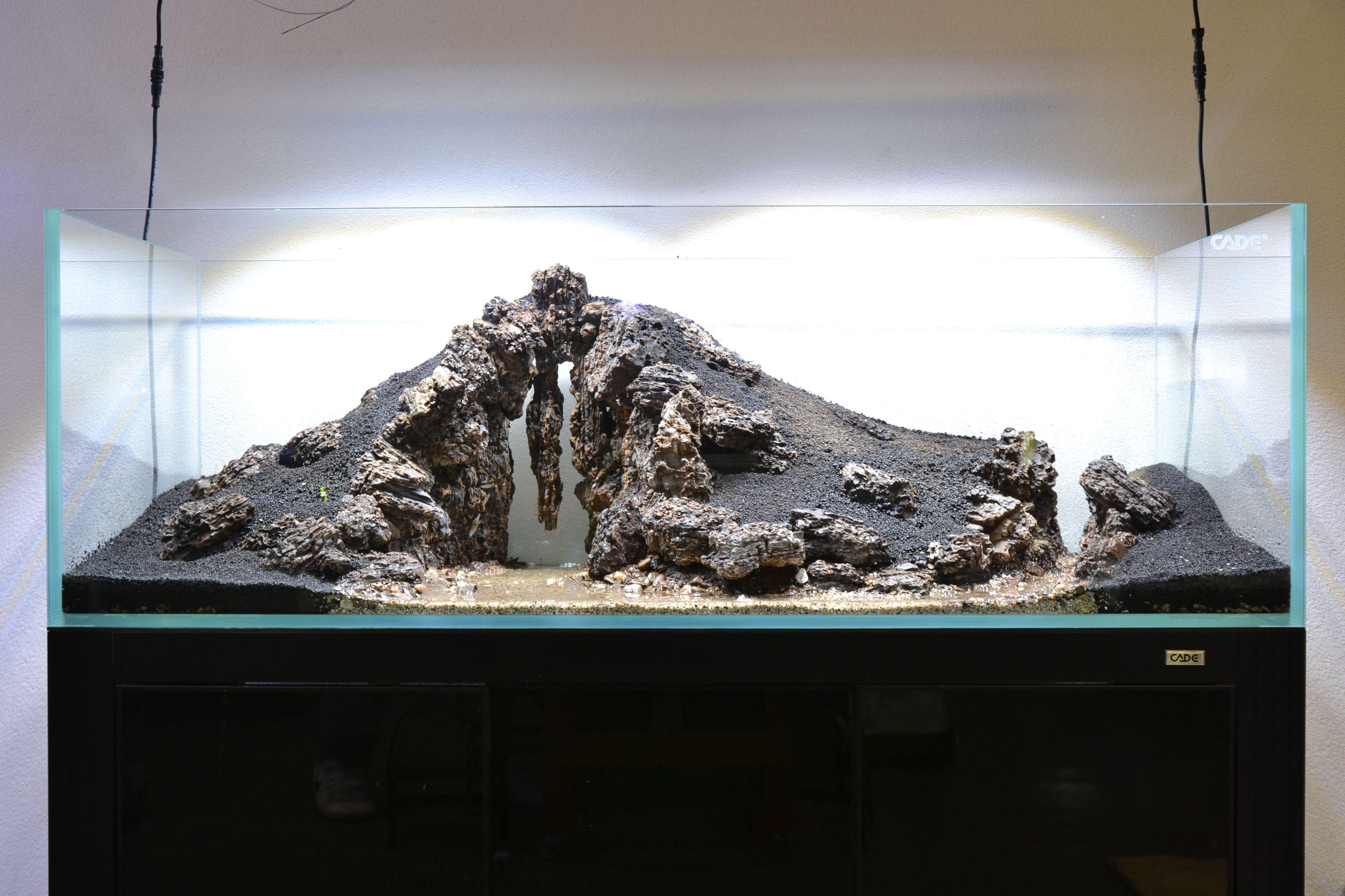 The Enchanted Cave   cade-australia   Aquascape aquarium