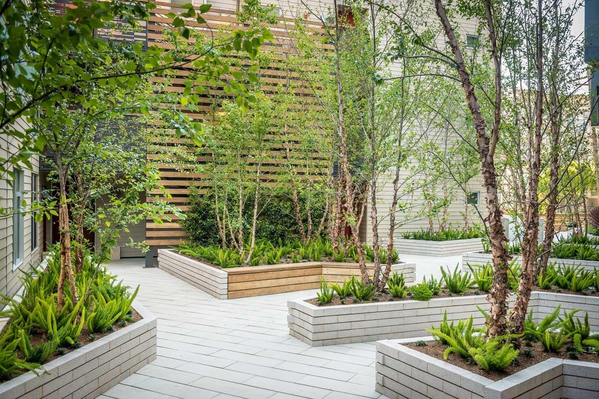2175 Market Street 02 171 Landscape Architecture Works