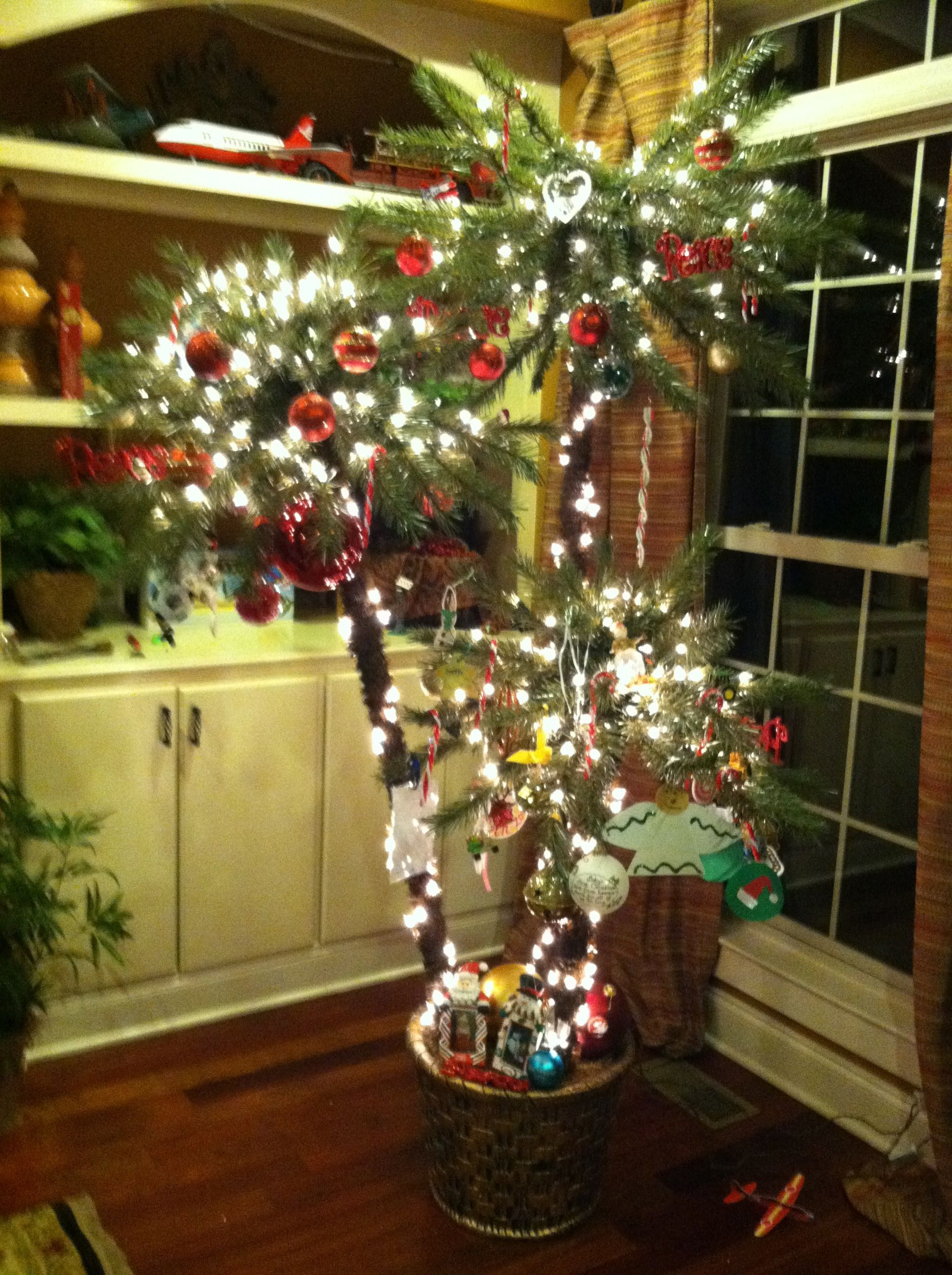 You might be a Jimmy Buffet fan if you have a palm tree instead of a Christmas tree.