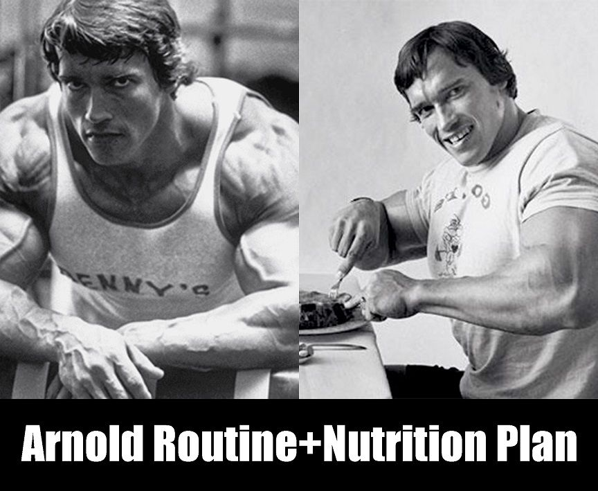 This is arnold schwarzeneggers blueprint arnold workout program arnold schwarzeneggers blueprint training program week1 malvernweather Gallery