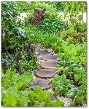 beginner vegetable garden free plans pictures and worksheets - Vegetable Garden Ideas For Beginners