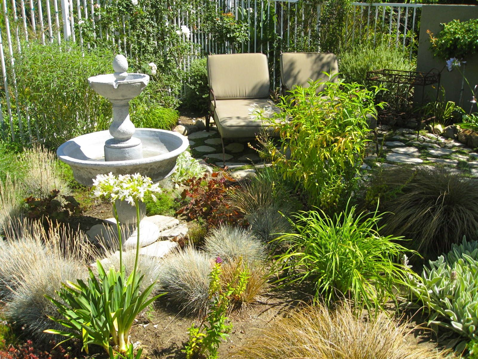 consider a no lawn backyard design to maximize the use of a small