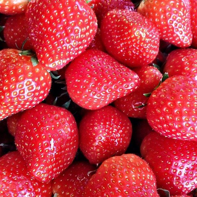 Mmm... Enjoying delicious strawberries at VERO MODA HQ today #veromodainside #veromoda #strawberries #loveit #spring #summer #amazing