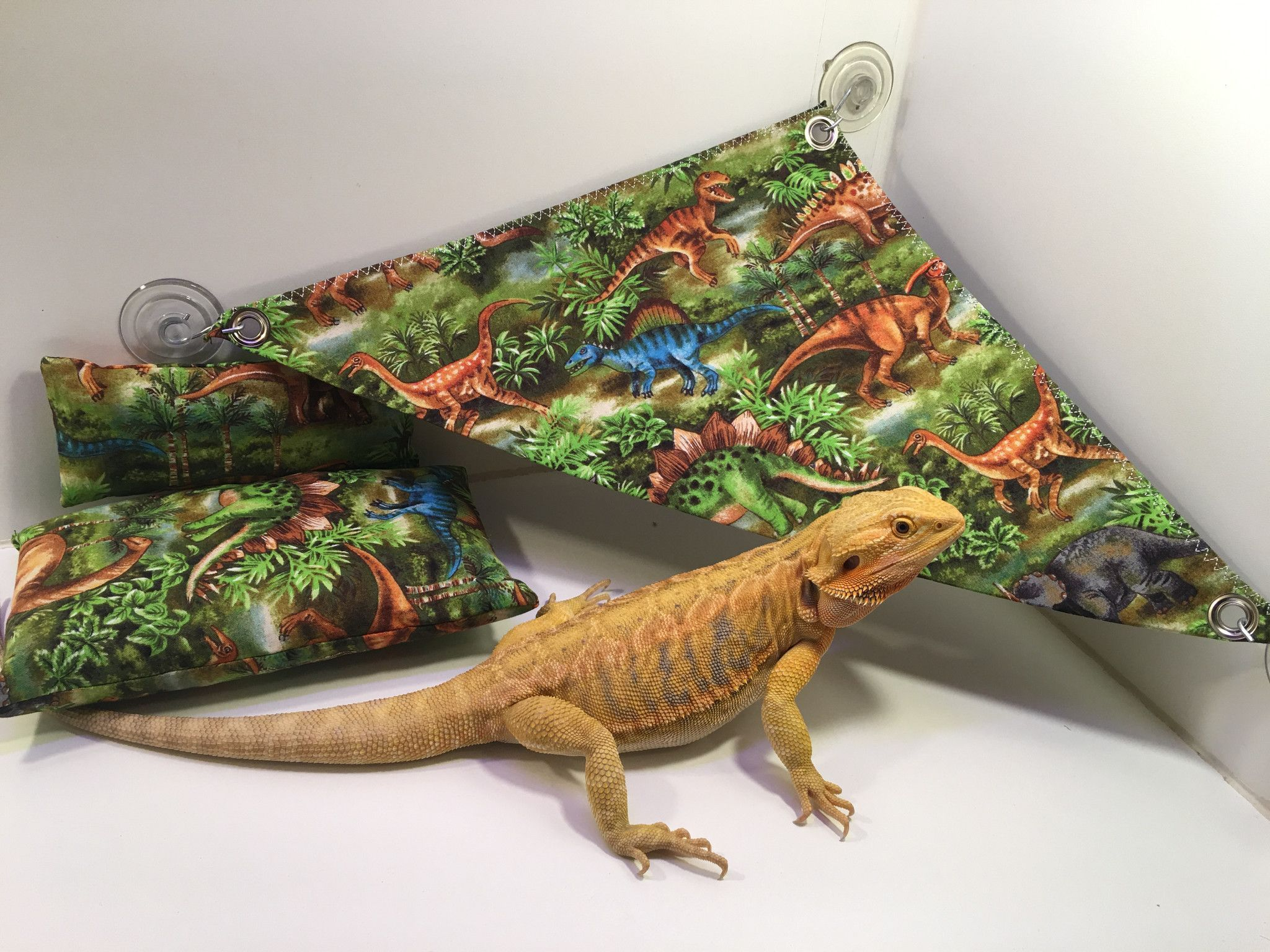 bearded dragon g dinosaur bed pillow hammock set small animal lizard reptile all sets are made for 40 gallon tanks or larger  hammocks are      rh   pinterest
