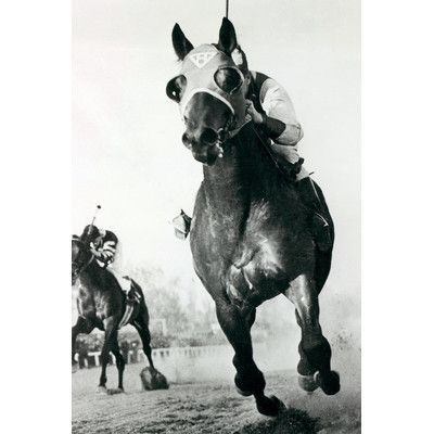 Charlton Home Seabiscuit Horse Racing 3 Photographic Print On Wrapped Canvas Size Paarden