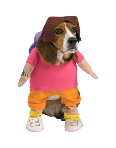 Dora Costume Omg Goldie Neeeeds This Partycity And Halloween