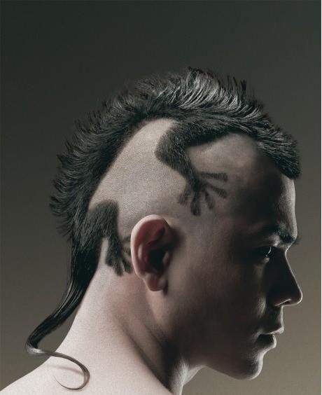 From The Internet Best Haircut Ever Via Quiltingmuriel Lizard Haircut Crazy Hair Creative Hairstyles