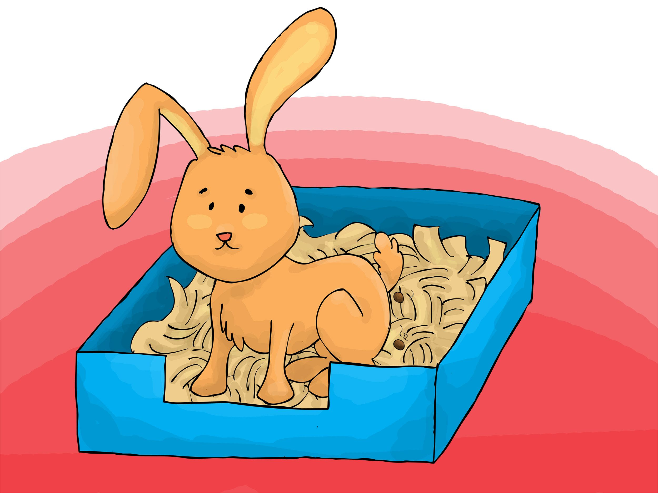 Forum on this topic: WikiHow:The Bunny Project, wikihow-the-bunny-project/