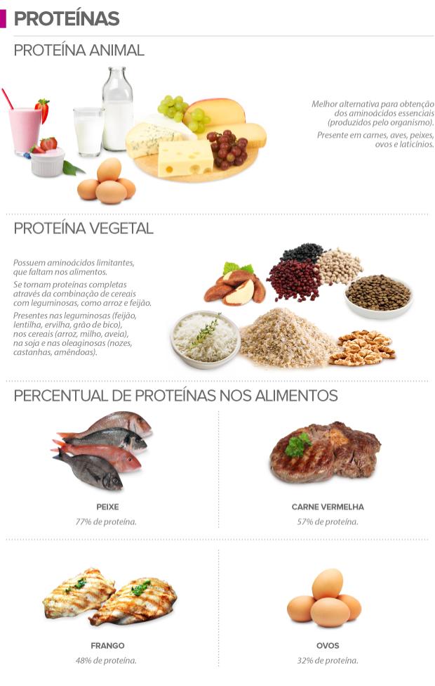 alimentos fontes de proteinas animal e vegetal