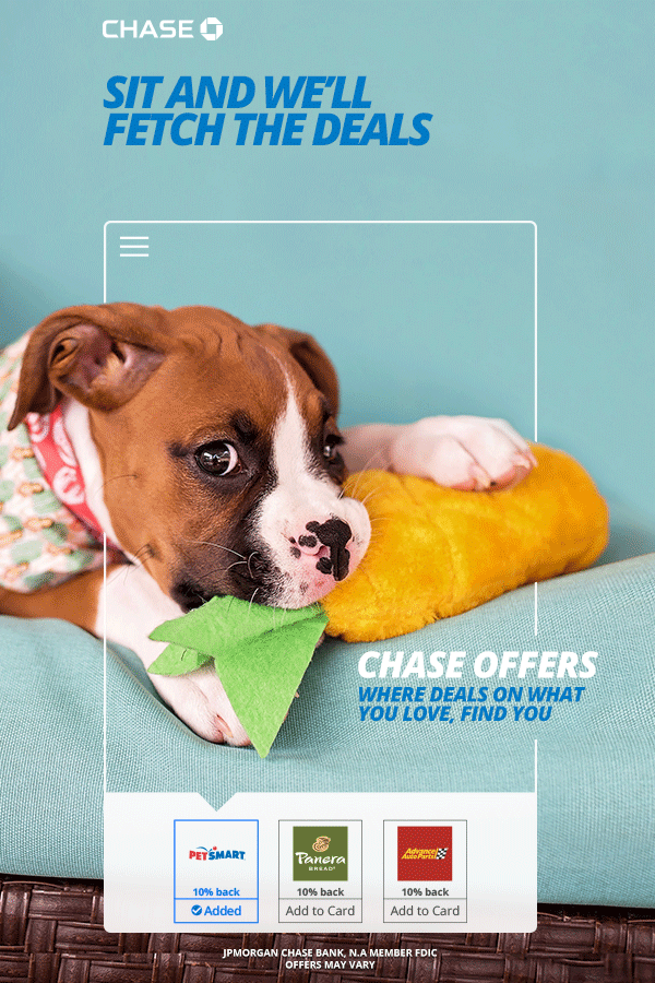 Activate Now In The Chase Mobile App | Chase | Cute dogs