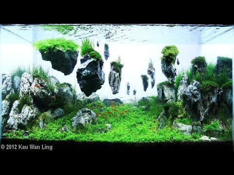 Fish tank landscapes google search fish tank for Garden aquarium design