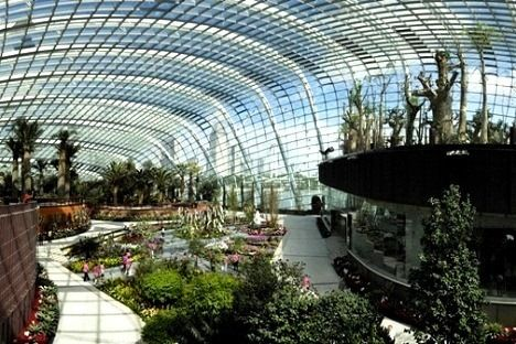 Garden By The Bay Admission gardensthe bay flower dome and cloud forest: singapore's