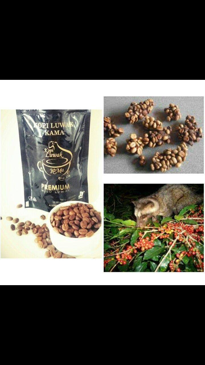 Yogyakarta Yogyakarta Food Coffee