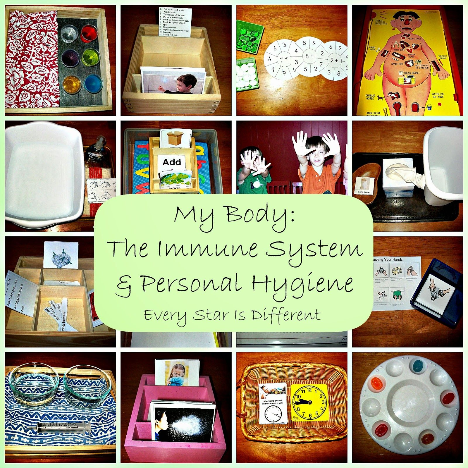 My Body The Immune System And Personal Hygiene