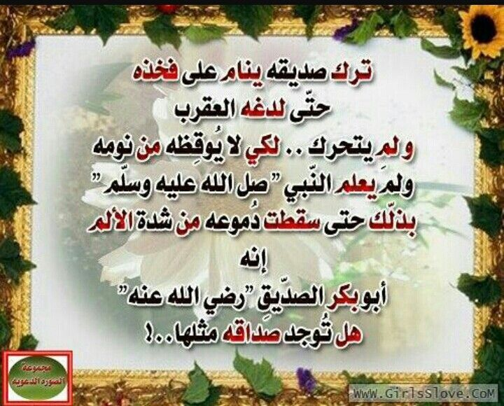 Desertrose أبو بكر الصديق رضي الله عنه وأرضاه صاحب رسول الله صلى الله عليه وسلم Arabic Calligraphy The Wiz Peace Be Upon Him