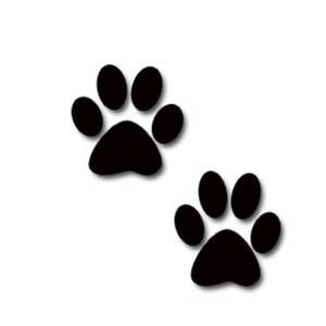 Cats Paw Prints Kitten Print