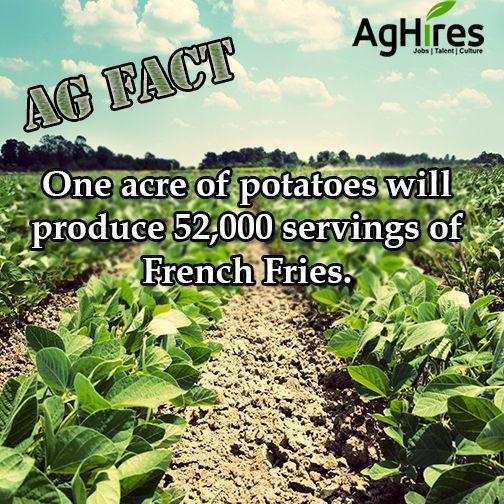 Ag Fact Agriculture Agriculture Facts Agriculture Education Farm Facts