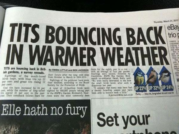 28 Newspaper Headline Fails That Win For Stupidity Funny