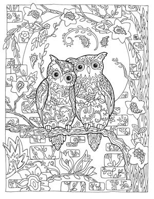 Creative Haven Owls Colouring Book By Marjorie Sarnat Paisley Love Birds
