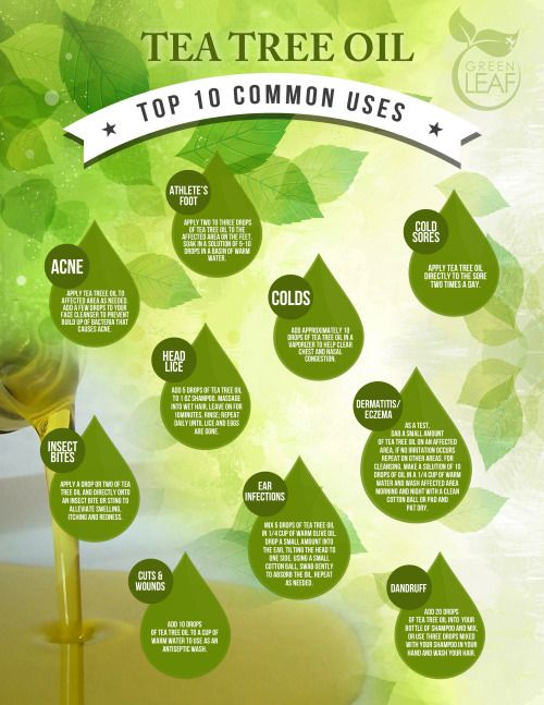 tea tree oil infographic