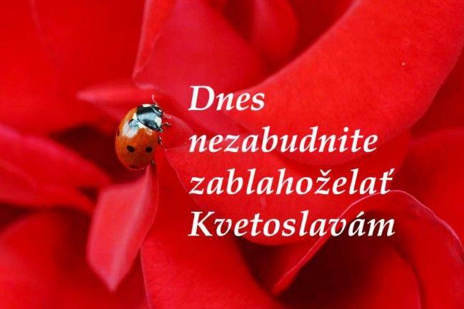 Kvetoslava je cieľavedomá - Zaujímavosti - SkolskyServis.TERAZ.sk