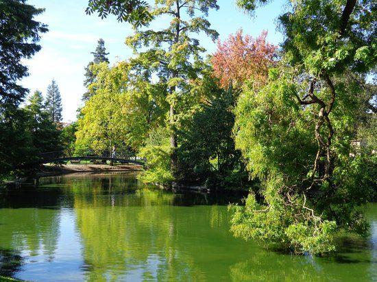 Bordeaux Jardin Public With Images Trip Advisor France Travel