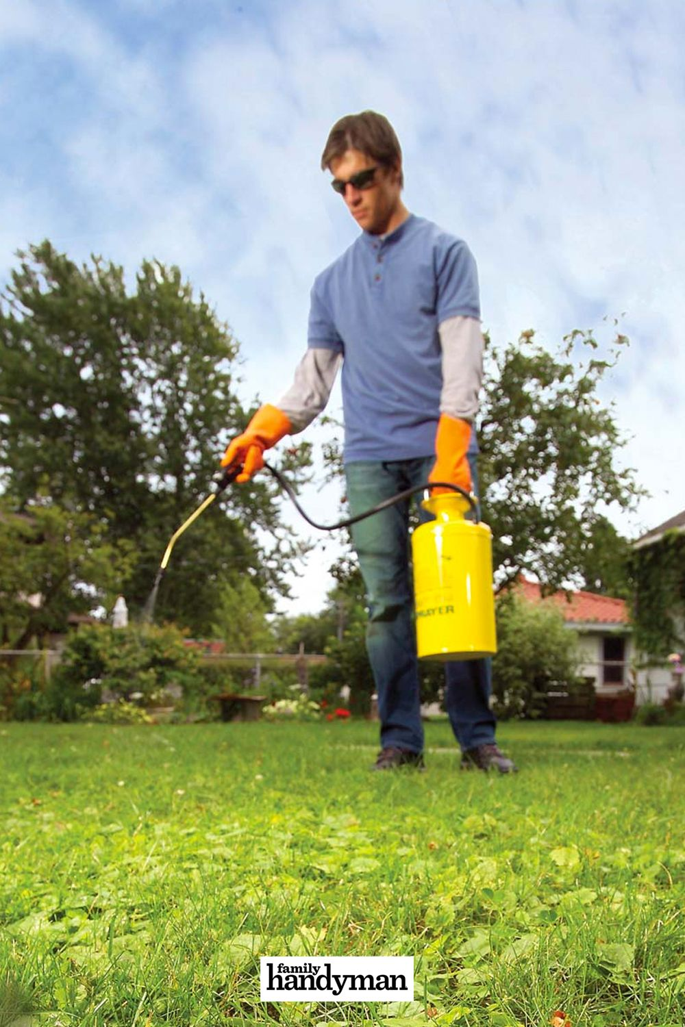 how long does it take for roundup for lawns to work