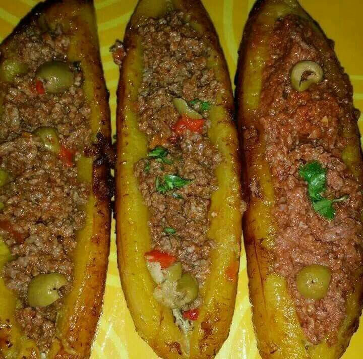 Ground Turkey Dog Food Recipes