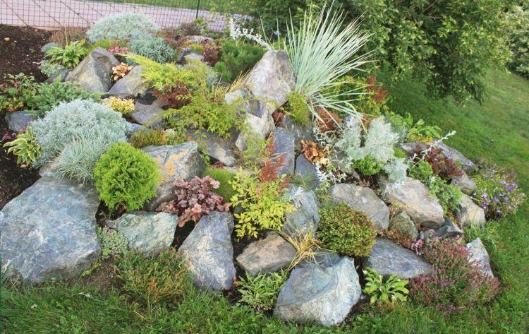 Steingarten Ist Mehr Als Ein Hugel Aus Pflanzen Und Steinen Steingarten Pflanzen Steingarten Gestalten Garten Pflanzen