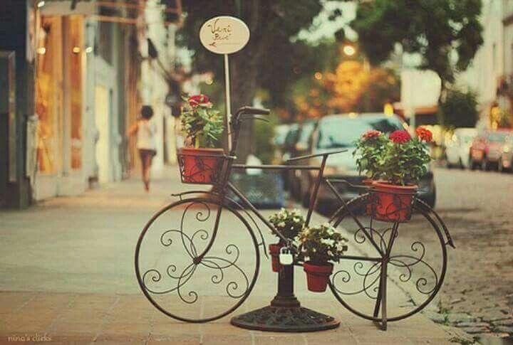 """""""Eu pensava ter uma bicicleta  e pedalar até a tua rua dizer que ainda sou tua.."""" ♥  - Apanhador Só"""
