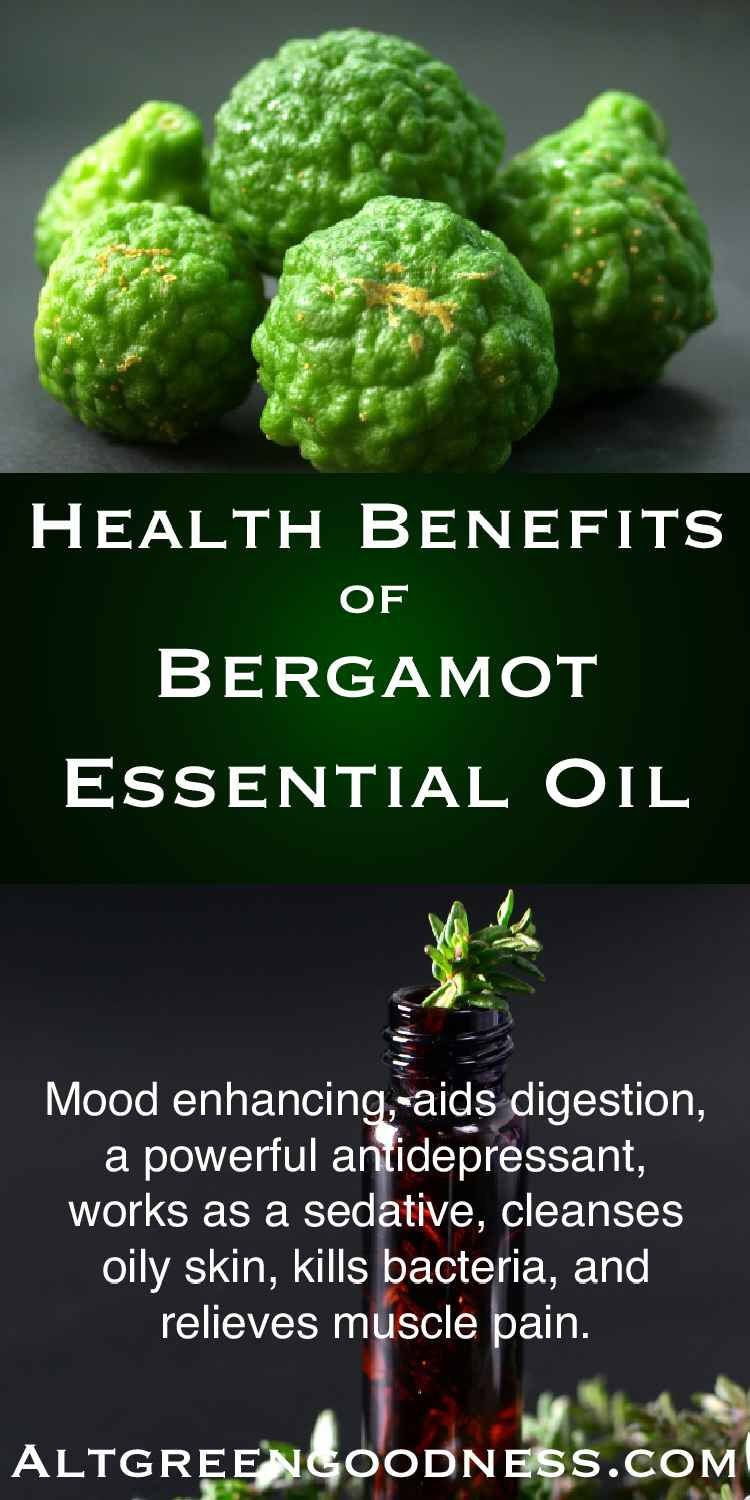 HEALTH BENEFITS AND USES OF BERGAMOT ESSENTIAL OIL 🌿