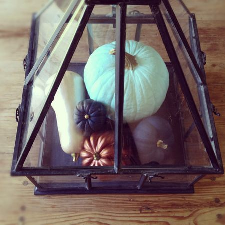 DIY painted pumpkins in non traditional color. Love the display.