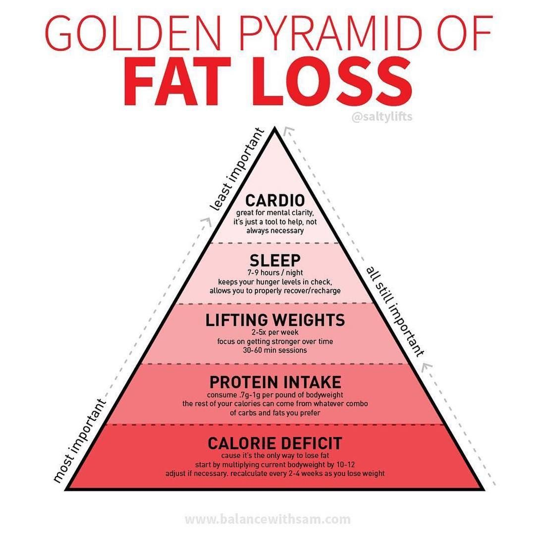Image result for golden pyramid of fat loss