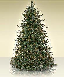 Artificial Christmas Tree Types.Glendale Fir Full And Regular Size Artificial Christmas