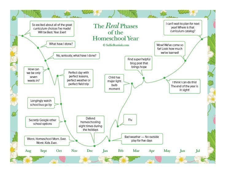 Did you know that there are definite phases to the school year? There is even a famous graph of the real phases of the first year for new teachers. I'm sharing the graph I made that shows the real phases of the homeschool year. Make sure you stop by to download your free printable!
