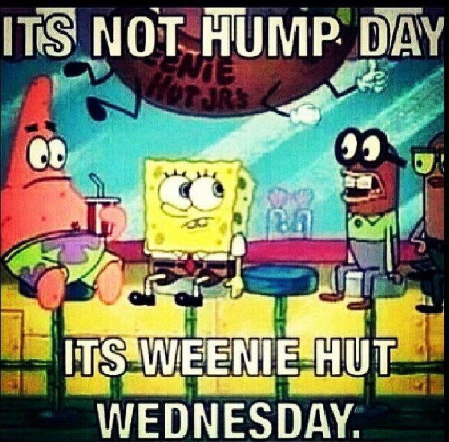e9988b47cc02144b4824395fb0f0c5e4 it's not hump day, it's weenie hut wednesday!! humor pinterest
