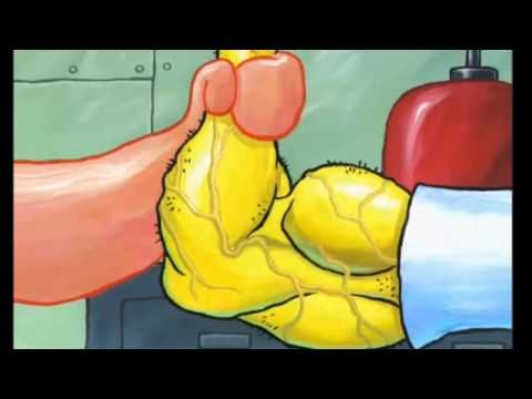 Spongebob's EPIC Bodybuilding Transformation! - YouTube