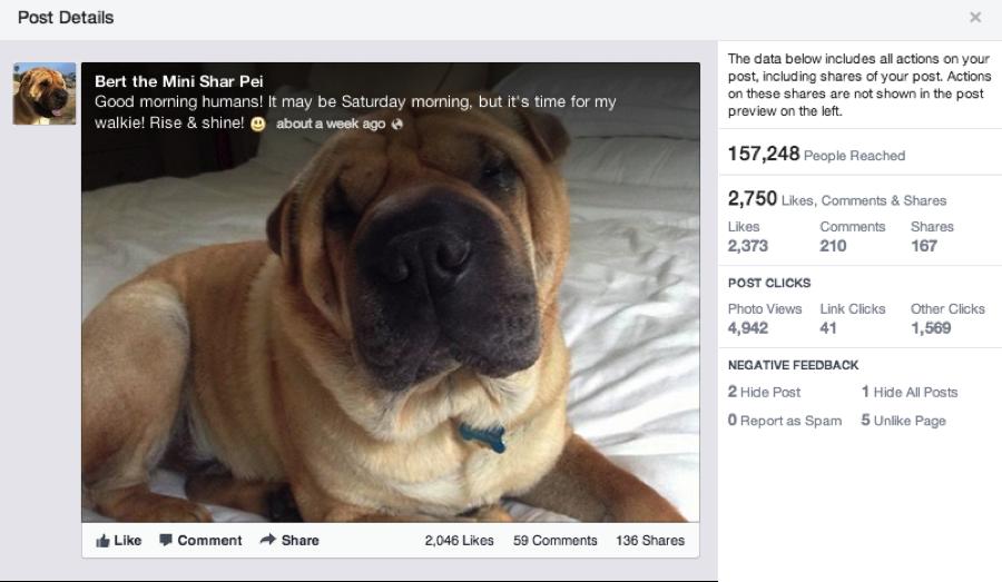 Neue Ansicht für einzelne Beiträge bei #Facebook   http://www.futurebiz.de/wp-content/uploads/2013/06/Screenshot1.png