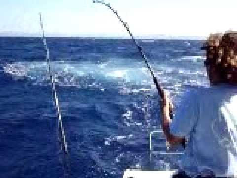 Fishing near tamarindo costa rica favorite places for Tamarindo costa rica fishing