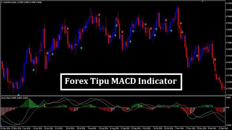 Forex Profit With Macd Full Course Forexmentor Forex Counter